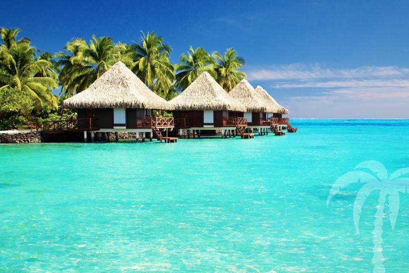 maledivy-beach-bungalows[1]